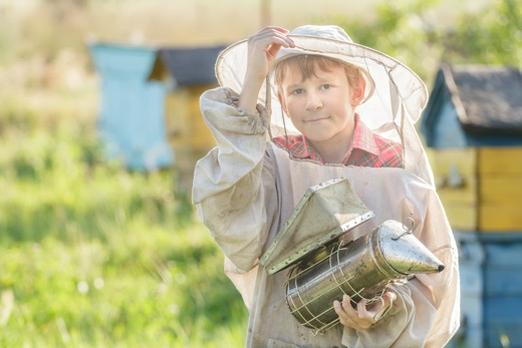 начинающий пчеловод, пчелиная семья, основы пчеловождения, журнал «Пчеловодство», интернет