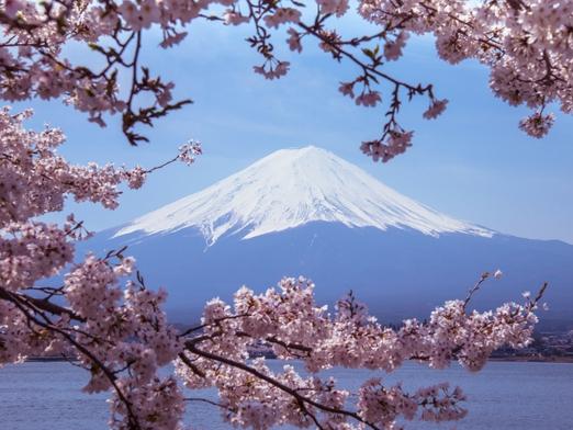 Япония, импорт меда, потребление меда, Китай