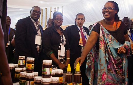 пчеловодство Руанды, программа развития пчеловодства, Закон