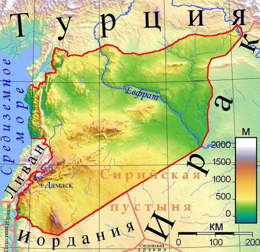 Пчеловодство Сирии: потенциал сохраняется