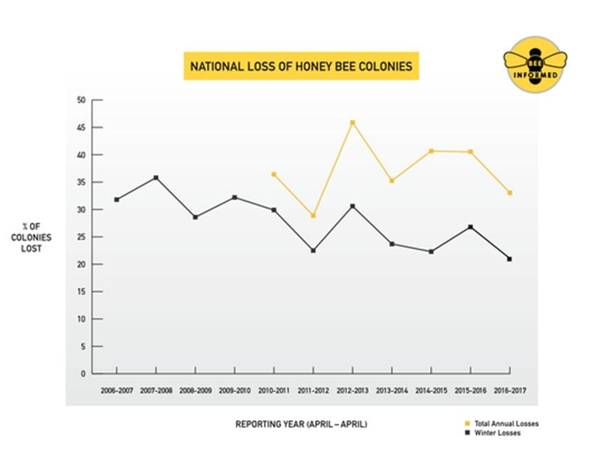 США, КПС, гибель пчел, защита здоровья пчел, опыление с/х культур, неоникотиноиды