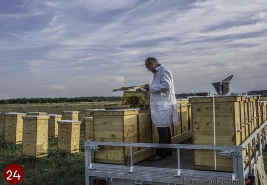 карпатские пчелы, Мукачево, конференция, 2016, Украина