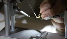 Подготовка спермы трутней для инструментального осеменения пчелиных маток. (Практическая инструкция)