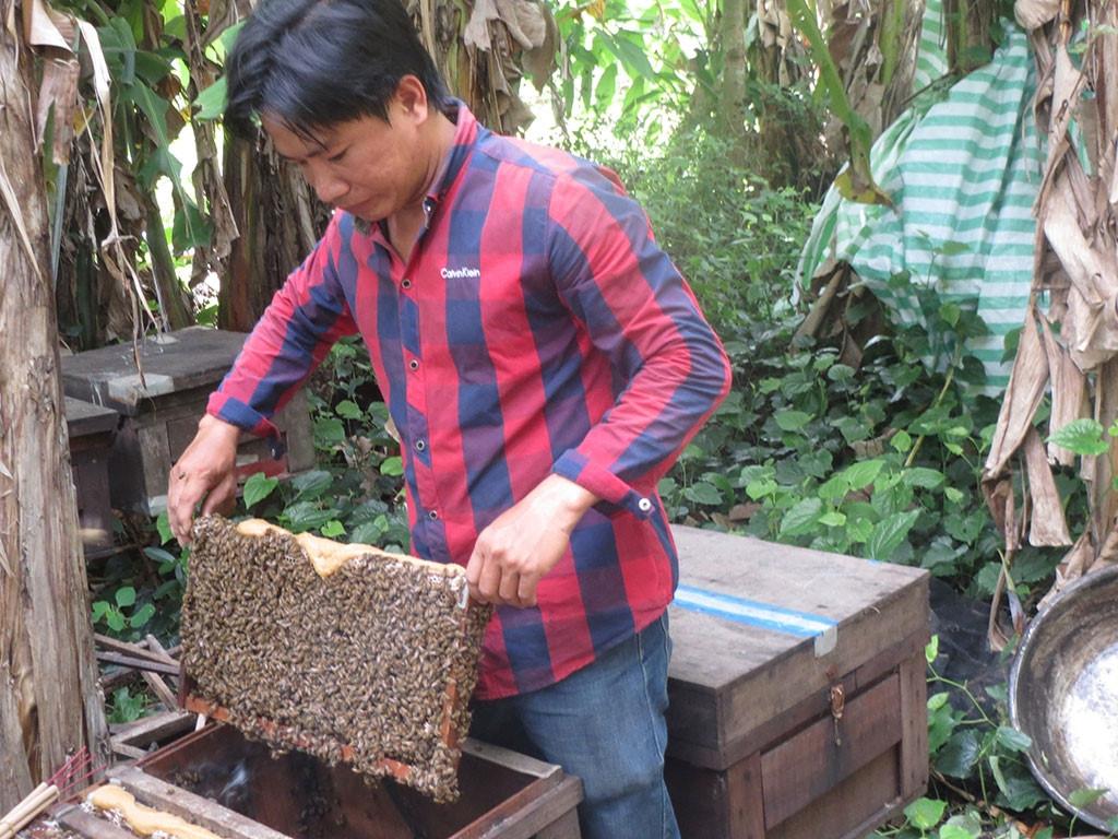 Вьетнам готовится увеличить поставки меда в ЕС